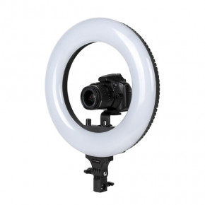14'' LED Basic BR130D Ringlight